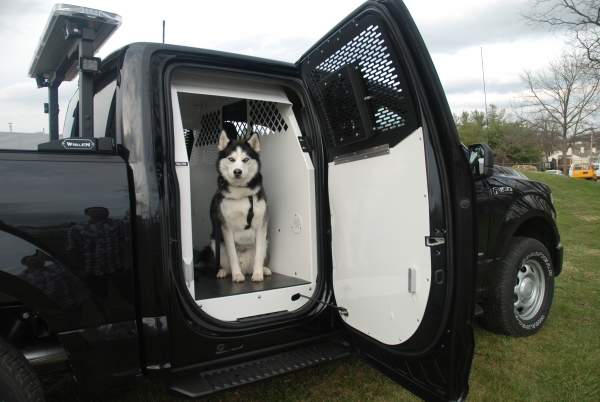 Havis K9 Transport System for Ford Crew Cabs | Mega-Tech